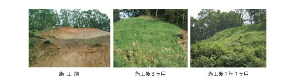 ガンリョクマット5型 施工例 施工後3ヶ月 施工後1年1ヶ月