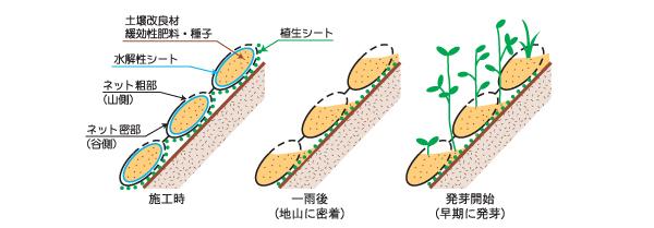 ガンリョクマットの構造