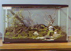 ガーデンボックス